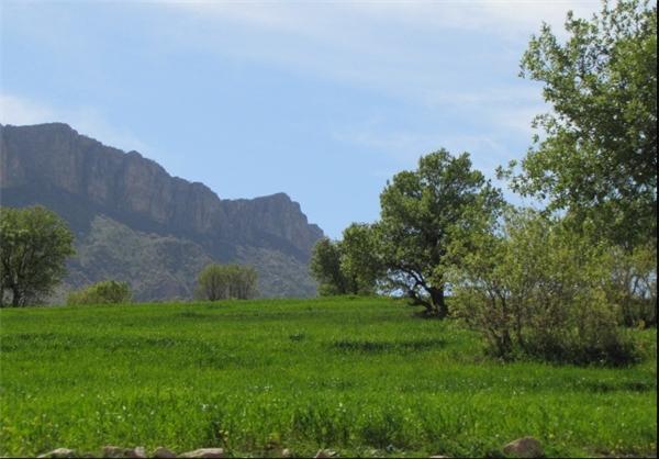 کوههای دالاهو