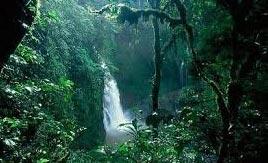 تور اندونزی 93