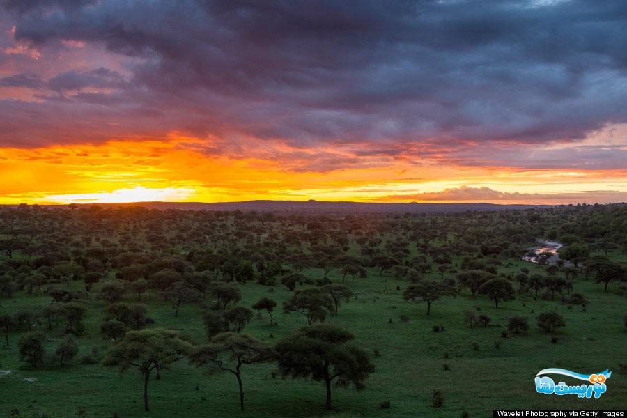 تانزانیا، پارک ملی تارانجیر