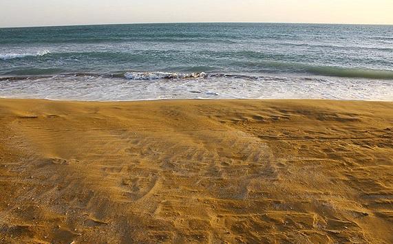 سواحل جلالیه