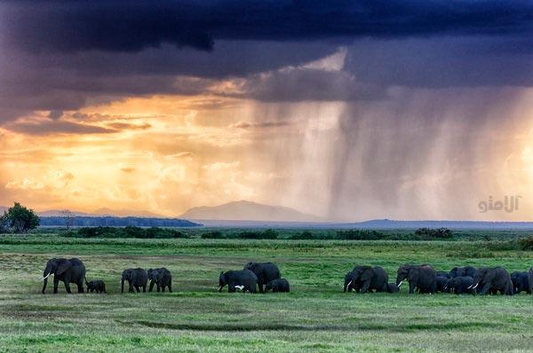 آفریقای شرقی-East-Africa