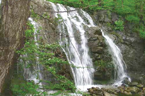 تصویر آبشار «کله سیران» طارم