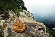 تصویر عجیب ترین جزیره های جهان